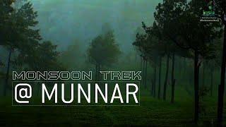 Munnar - The Tea Capital