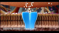Mecanismo de Accion de ⓖⓐⓥⓘⓝⓓⓞ (GABAPENTINA)