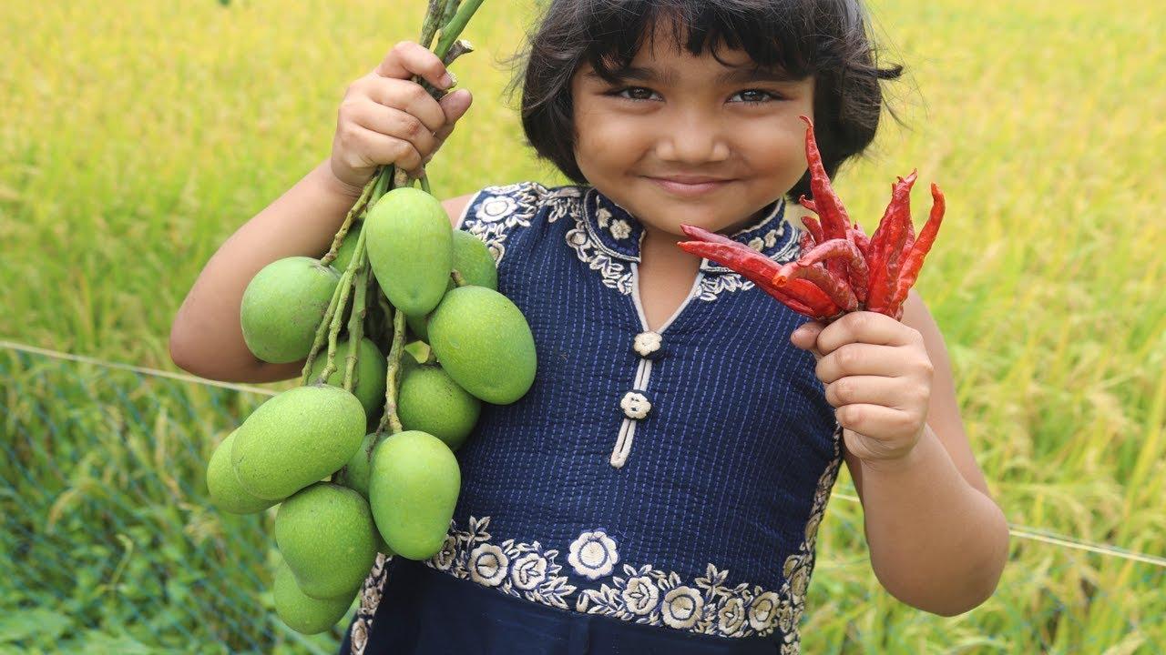 Download Yummy Kacha Aam Makha Recipe Village Style Farm Fresh Tasty Masala Raw Mango Village Food