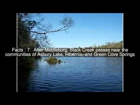 Black Creek (Florida) Top  #14 Facts