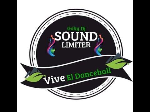 -3 Vive El Dancehall - Gaby 🔰SOUND LIMITER🔰   Previo Vol1
