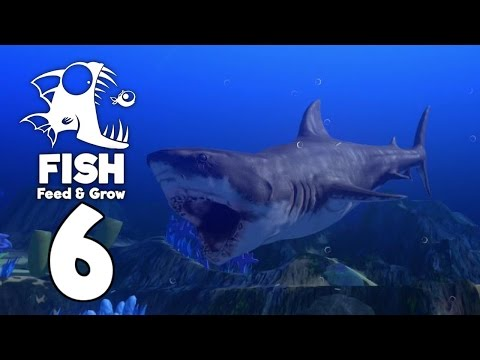 Becoming the Great White Shark - Feed and Grow Fish Gameplay - Part 6