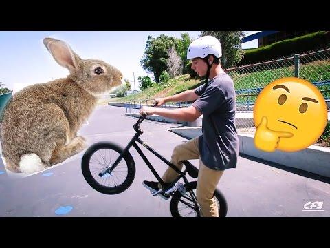 How to bunnyhop BMX