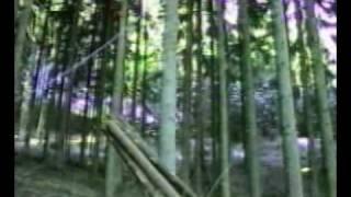 Funicular - Maxwald