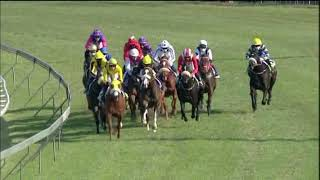 Vidéo de la course PMU ZULU KINGDOM EXPLORER GOLDEN SLIPPER