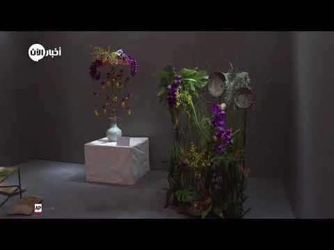 المسابقة العالمية لفن تنسيق الزهور 2019 في بكين  - نشر قبل 8 دقيقة