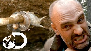 Ed Stafford: Left For Dead | Ed Nearly Vomits After Eating Snails