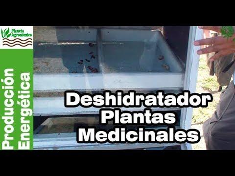 Tecnología solar – 5 - Deshidratador mixto especial para plantas medicinales