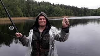 Озеро Заборье Рыбалка Щука на кружки Плотва на удочку