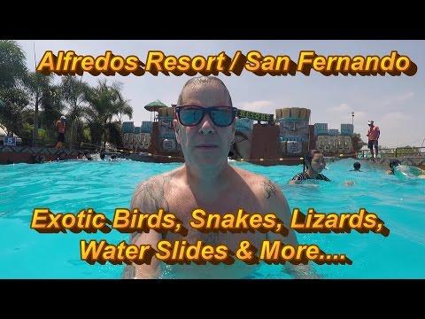 Angeles City Philippines : Alfredos Resort, San Fernando - Birthday Party
