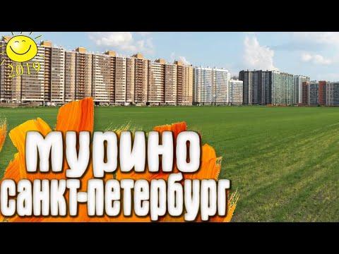 Мурино - Санкт-Петербург / 2019