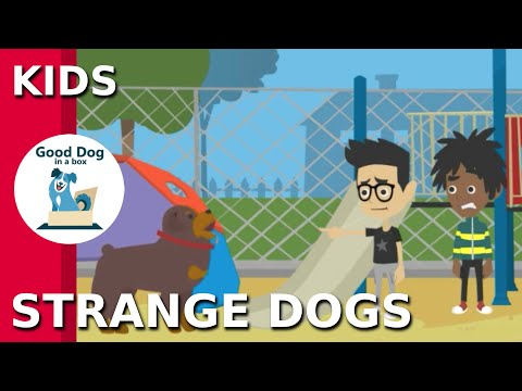 [STRANGE DOGS]: Be SAFE Dog Bite Prevention Video for Kids | Good Dog In A Box (2019)