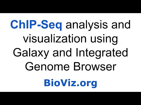 ChIP-Seq Analysis and Visualization