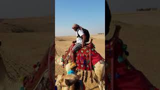 Kodak Black Egypt, Africa is looking for Kodak #tunnelvision #skrilla #africa #kodak #pompanobeach