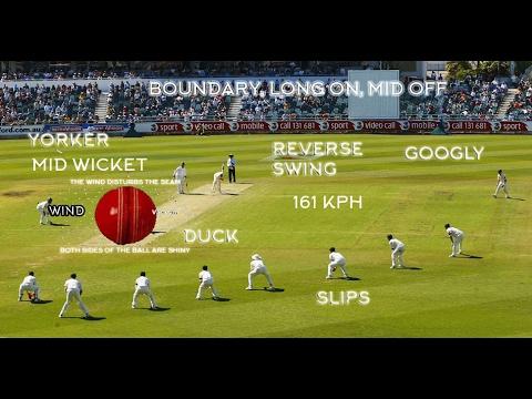 Cricket Sports