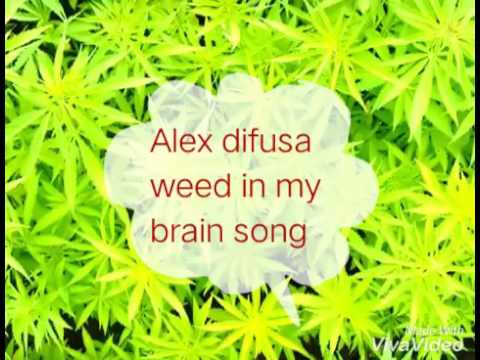 Ganja in my brain song 000