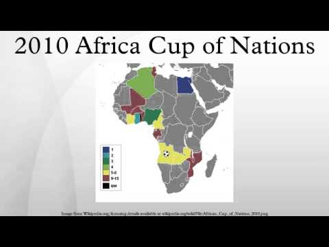 2010 Africa Cup of Nations