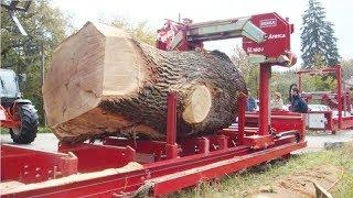 Amazing Modern Wood Sawmill Machines, Extreme Automatic Wood Cutting Machine