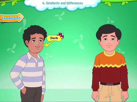 Learn Grade 1 - EVS - Similarity And Differences