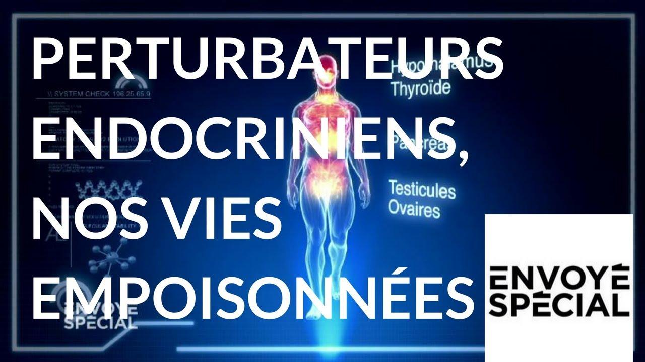 Envoyé spécial. Perturbateurs endocriniens, nos vies empoisonnées - 3 mai 2018 (France 2)