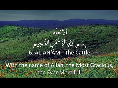 surah-6---al-anam:-🔊-arabic-recitation-with-english-subtitles.-nature-backgrounds