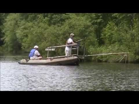 Stormwater Rescue Project - Fish Rescue At Huntsman Lake