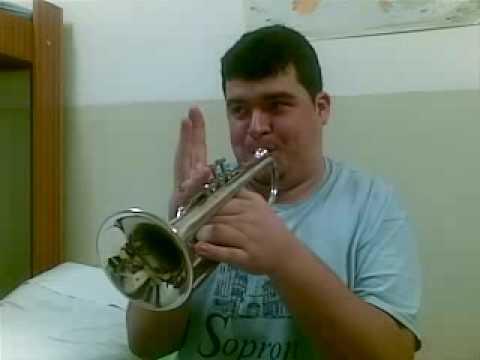trumpet C5 hopa