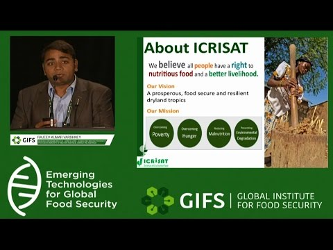Rajeev Varshney speaking on Next Generation Genomics on Chickpea in GIFS Conference in Canada