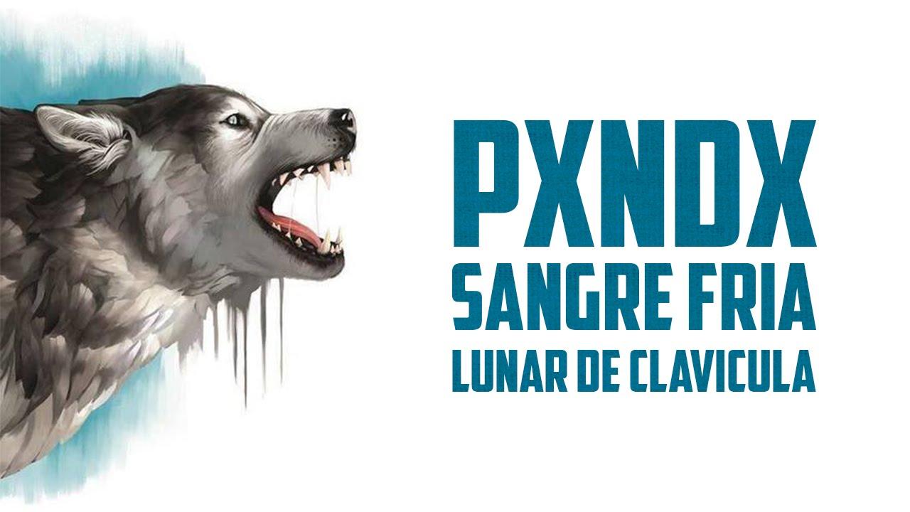 Download Lunar De Clavicula   Panda   Sangre Fria