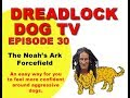 Episode 30   The Noah's Ark Forcefield
