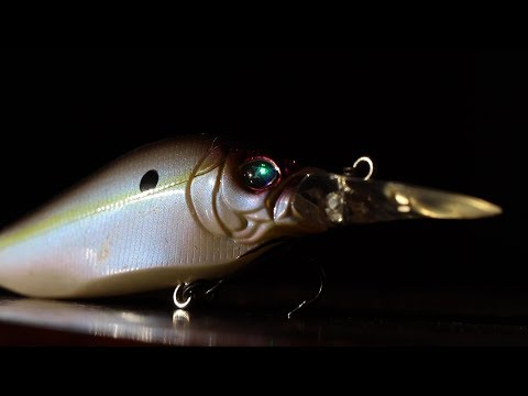 EXPENSIVE Megabass LURES