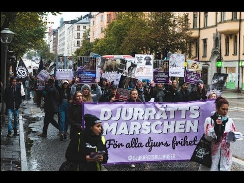 Animal Rights March Stockholm