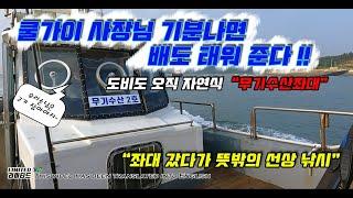 [리미티드TV]도비도항…
