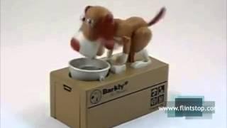 Doghound Piggy Bank