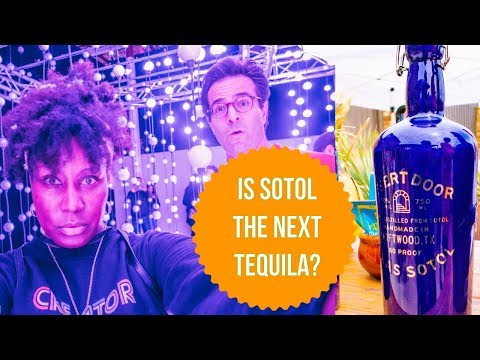 Top Things To Do In Austin Texas - Tasting SOTOL, CRAWFISH BOIL + CRAZY Light Show!