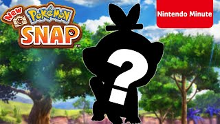 Who's That Pokémon? Featuring New Pokémon Snap