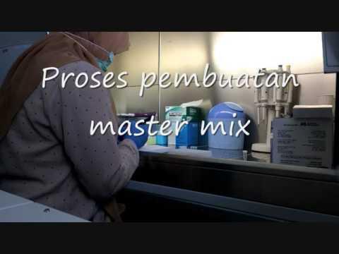 PCR -  Polymerase Chain Reaction  menggunakan metode konvensional