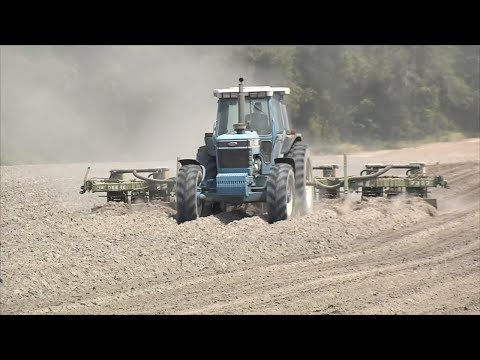 2018 Peanut Planting Has Been A Challenge For Georgia Farmers