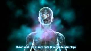 b sensual ft barbarita te quiero puta blade mashup vs thomas gold alex kenji what s up