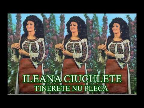 ILEANA CIUCULETE : ( album - Tinerete nu pleca 1984 Full )