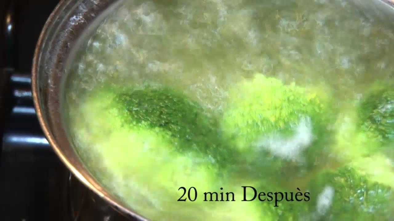 Como Cocinar Brocoli Hervido | Brocoli Cocido Youtube