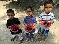 Village Food ❤ Jamun Fruit ❤ Black Plum Fruit Tree In My Village ❤ Village Food Secrets