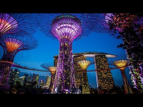 Supertree Grove - Marina Bay, Singapore - HD