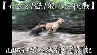 単犬ではオラオラ過ぎて止めれないナツ。 補佐的なポジションでは成果を...