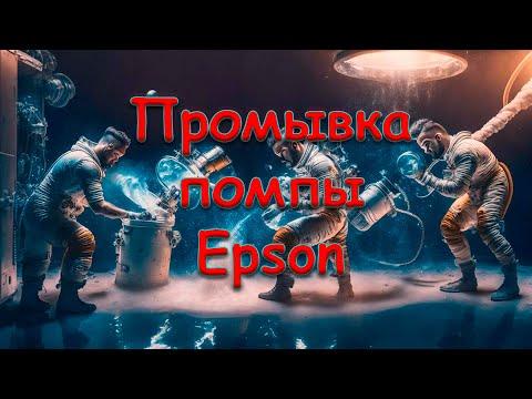 видео: Промывка помпы принтеров epson