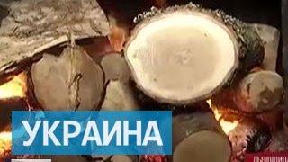 Украина входит в зиму без запасов угля