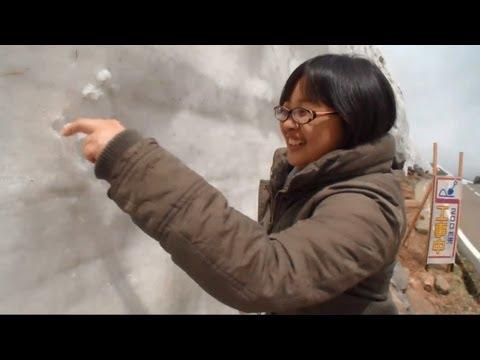 惊奇日本~冒险旅行:夏天的雪世界【ビックリ日本~冒険旅:6月に雪の壁が!】