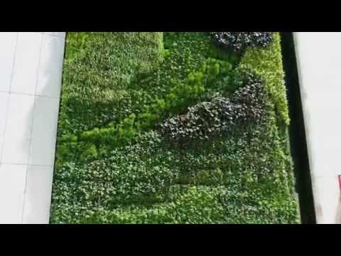 Prudential Tower Living Wall - Project of the Week 7/20/15