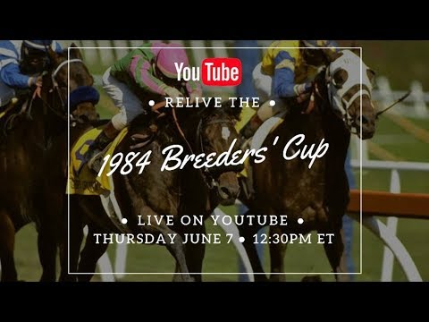 LIVE The 1984 Breeders' Cup World Championships