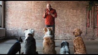 JSDT1 Dog Trainer Certification Course
